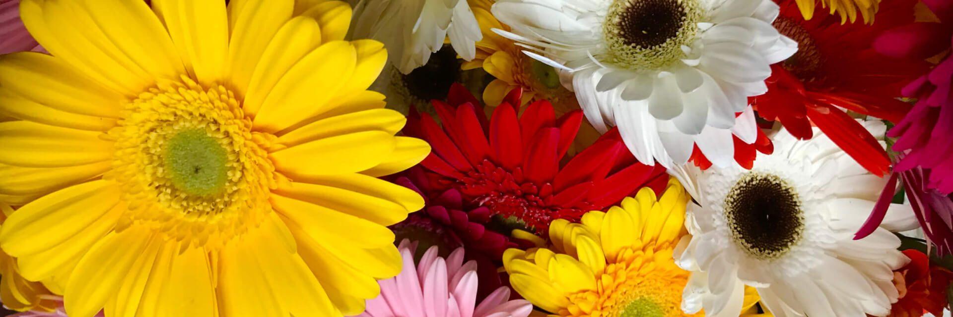 Flower arrangement up close